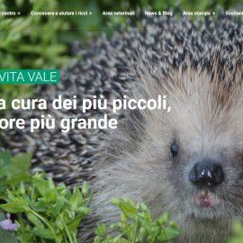 copertina sito