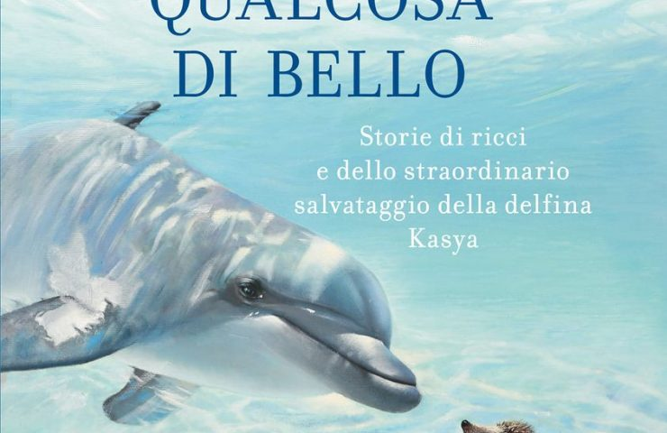 Esce il 19 ottobre Raccontami qualcosa di bello, l'ultimo libro di Massimo Vacchetta